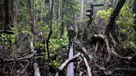 FOTO: Menjaga Marwah Hutan Aceh
