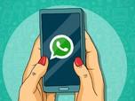 Cara Melacak Lokasi Orang Lain via WhatsApp, Tanpa Aplikasi