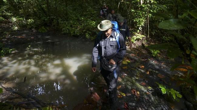 Tak hanya kawasan Suaq Balimbing, Aceh juga memiliki hutan Subulussalam yang menjadi kawasan perlindungan untuk beberapa satwa seperti gajah, beruang, dan ular king kobra.