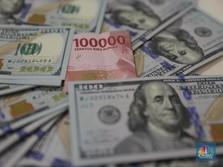 Pemerintah Tambah Utang, Cadangan Devisa Ri Naik US$ 3,5 M