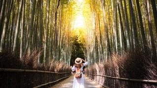 Mau Liburan ke Jepang? Perhatikan Ini Agar Perjalanan Nyaman