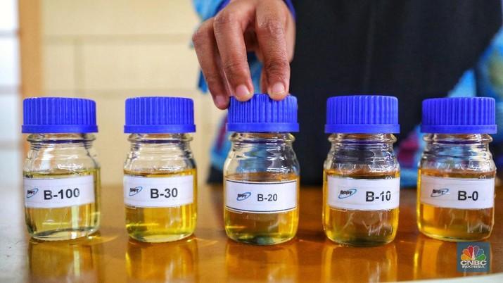 Harga biodiesel terseret mengikuti harga CPO