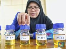 Eropa Hajar Biodiesel RI, Kemendag: Mereka Takut Tersaingi