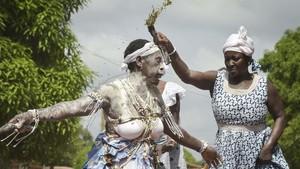 FOTO: Komian-komian yang Terancam Punah di Pantai Gading
