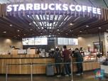 Heboh Kasus Intip Payudara di Starbucks, Saham MAPI Drop 1,3%