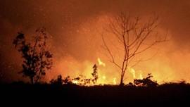 Denda Rp18,3 T ke Perusahaan Pembakar Hutan Sedang Dieksekusi