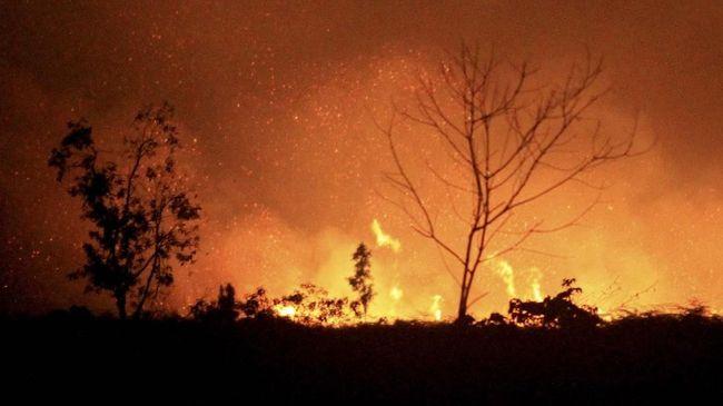 Lahan Gambut Dekat Perkampungan Suku Adat Sakai Terbakar