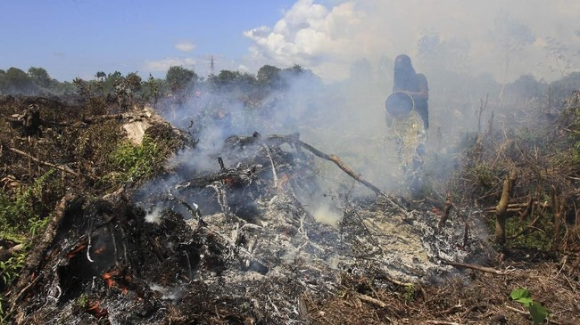 Peralatan yang dimiliki petugas juga tidak lengkap sehingga menambah sulit upaya pemadaman api yang membakar lahan gambut. (ANTARA FOTO/Syifa Yulinnas)