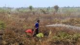 Pemadaman sampai saat ini masih terus dilakukan. Petugas kesulitan karena api berada di bawah tanah membakar lahan gambut. (ANTARA FOTO/Syifa Yulinnas)
