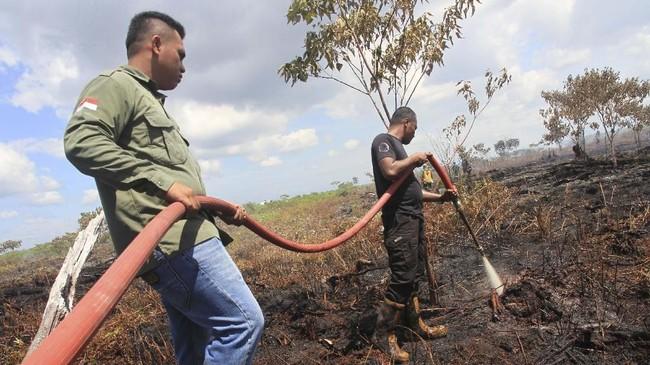 Petugas membutuhkan air yang cukup banyak untuk memadamkan api di lahan gambut di Aceh Barat itu. (ANTARA FOTO/Syifa Yulinnas)