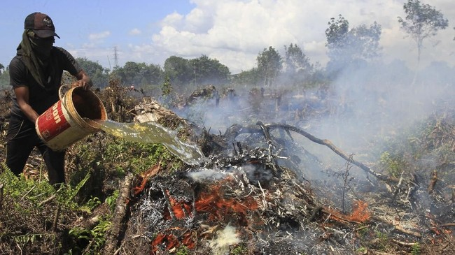 Warga juga membantu petugas memadamkan api di lahan gambut dengan cara sederhana. (ANTARA FOTO/Syifa Yulinnas)