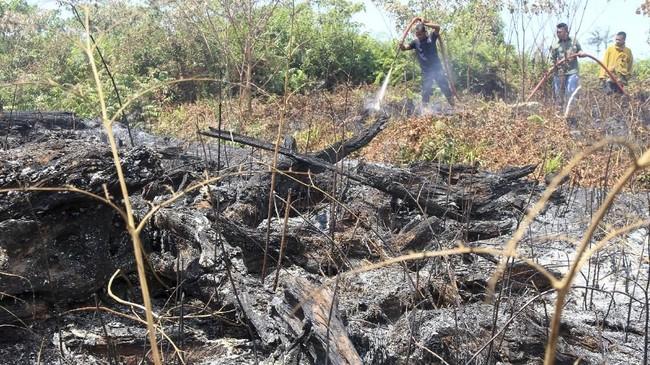 Kepala Staf Korem (Kasrem) 012/Teuku Umar Letkol Inf Yudhiono mengatakan pemadaman sulit dilakukan karena api ada di bawah permukaan bawah lahan gambut sehingga api sangat cepat dan mudah menjalar.(ANTARA FOTO/Syifa Yulinnas)