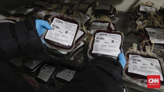 Enzim dalam Usus Bisa Mengubah Golongan Darah Manusia