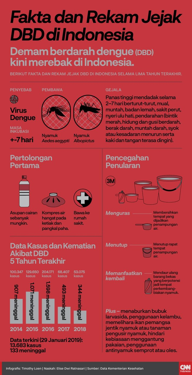 INFOGRAFIS: Rekam Jejak Demam Berdarah di Indonesia