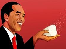 Jokowi Sebut Beras Surplus 2,85 Juta Ton, Kenapa Masih Impor?