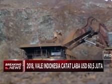 Vale Indonesia Raih Laba USD 60,5 Juta di 2018