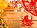 Peruntungan Shio Kelinci di Tahun Babi Tanah