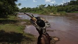 FOTO: Insiden Bendungan Jebol Brasil Ancam Suku Tradisional