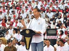 Jokowi: Impor Jagung RI Berkurang 3,4 Juta Ton!