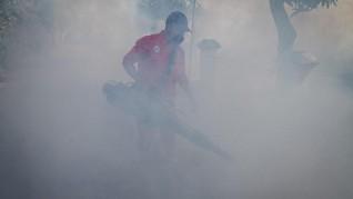 FOTO: Waspada Demam Berdarah