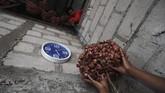 Hasil bawang di Pulau Sabu bisa mencapai hingga 3 ton saat panen tiba. (ANTARA FOTO/Puspa Perwitasari)