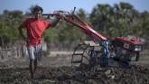 Harga BBM yang tadinya Rp100ribu kini turun drastis menjadi Rp6.450 (premium) dan Rp5.150 (solar). Kini, para petani di Sabu pun, bisa menanam bawang hingga berhektar-hektar di atas lahan mereka. (ANTARA FOTO/Puspa Perwitasari)