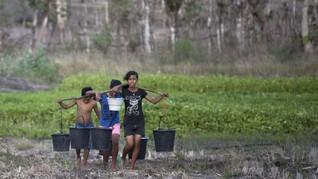 FOTO: Hasil Panen Bawang Petani di Pulau Sabu