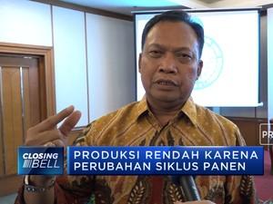 Produksi CPO Indonesia Diprediksi Melambat