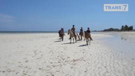 VIDEO: Rio Dewanto Jinakkan Kuda Sumba