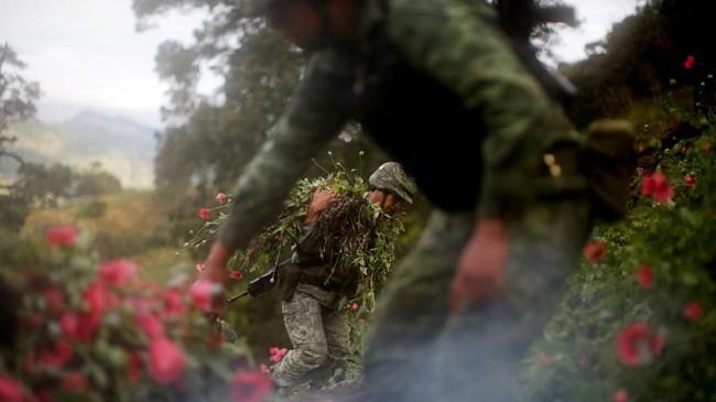 Aksi mafia tersebut membuat petani hidup sulit, namun penyelundup narkoba top Meksiko menghasilkan miliaran dollar untuk pecandu di Amerika Serikat. (REUTERS/Carlos Jasso).
