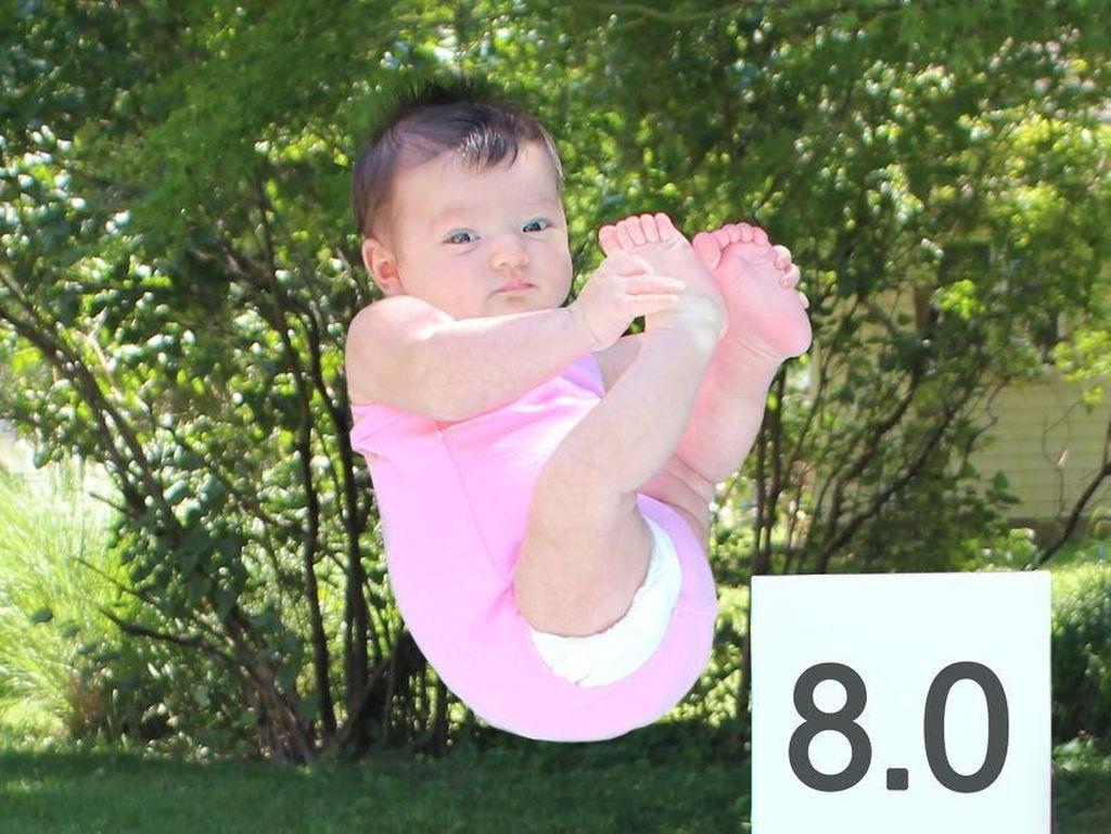 Kemampuan lompat indah Ella diganjar nilai 8 oleh sang panda kesayangan. Istimewa/Dok. Boredpanda.