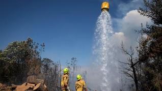 Kebakaran Lahan di Selandia Baru, Ribuan Warga Dievakuasi