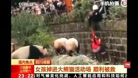 VIDEO: Momen Penyelamatan Gadis dari Kandang Panda di China