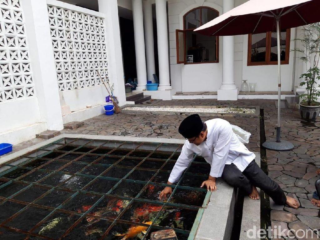 Sebelum meninggalkan rumah dinas Wakil Gubernur Jatim, Gus Ipul sempat bernostalgia dengan beberapa tempat di areal dalam rumah tersebut. Memakai kemeja koko berwarna putih dan berkopiah hitam, dia menuju kolam ikan yang berada di belakang rumah.
