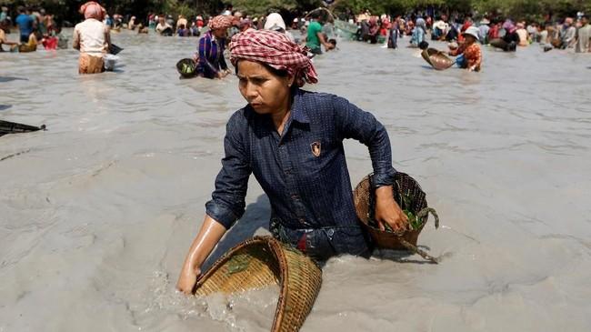 Biasanya acara ini dilakukan untuk merayakan musim panen padi. (REUTERS/Samrang Pring)
