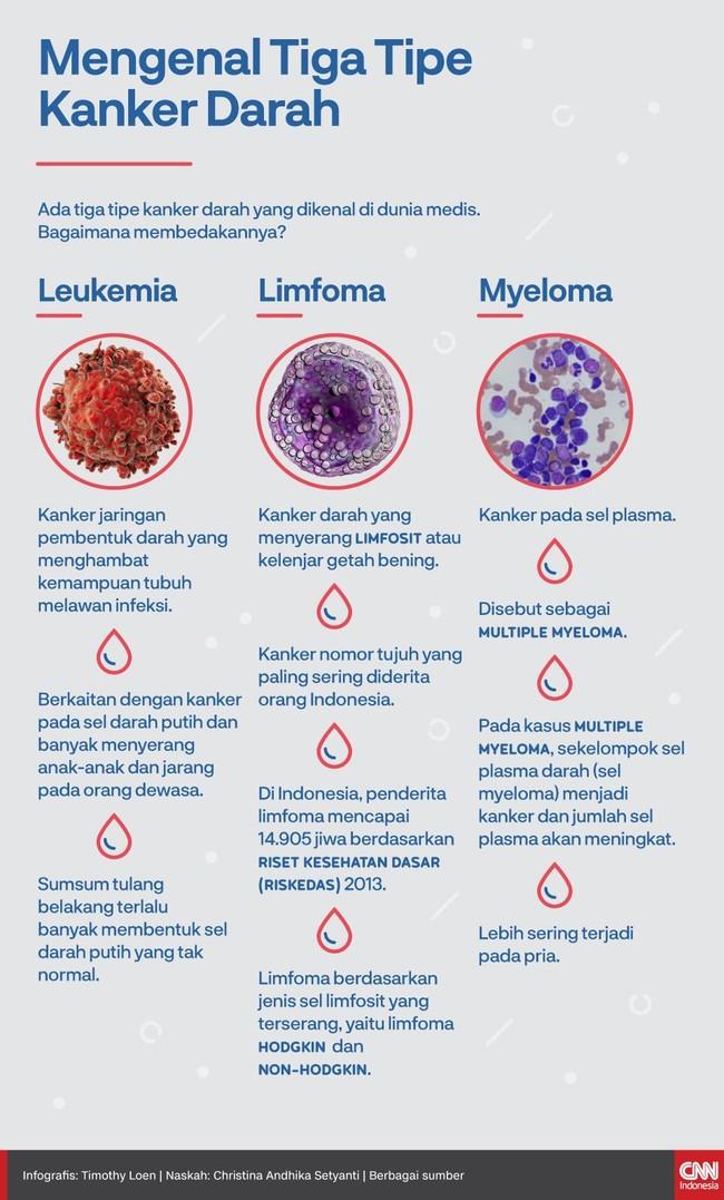 INFOGRAFIS: Membedakan Tiga Tipe Kanker Darah