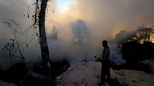 Seorang petugas kepolisian mengamati kebakaran hutan dan lahan di kecamatan Dumai Barat, Dumai, Riau, Selasa (12/2). BMKG Stasiun Pekanbaru mencatat dari 49 titik panas terdeteksi pada Rabu (13/2), 34 berada di Kabupaten Bengkalis. (ANTARA FOTO/Aswaddy Hamid)
