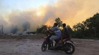 Karhutla Riau Capai 1.136 Hektare dalam Dua Bulan