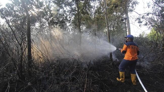 Petugas penanggulangan bencana (BPBD) memadamkan api yang membakar lahan gambut dekat permukiman warga di Kecamatan Dumai Barat Kota Dumai, Dumai, Riau, 8 Februari 2019. Kebakaran lahan yang terjadi di Kota Dumai saat ini mulai mendekati kawasan permukiman warga di bagian barat kota itu. (ANTARA FOTO/Aswaddy Hamid)