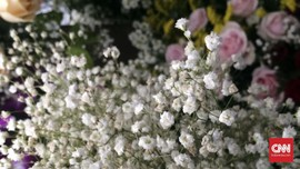 Cara Mengawetkan Bunga agar Tetap Cantik