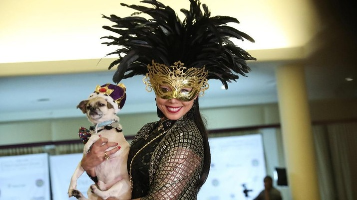 Lucunya Gaya Anjing-Anjing Ini di New York Pet Fashion Week!