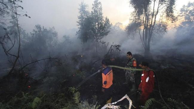 Badan Penanggulangan Bencana Daerah (BPBD) Provinsi Riau, kebakaran hutan dan lahan di sejumlah wilayah di Riau seperti Dumai terus meluas akibat cuaca panas dan angin kencang. (ANTARA FOTO/Aswaddy Hamid)