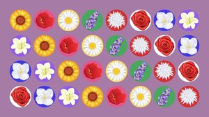 INFOGRAFIS: Beda Bunga Beda Arti Cinta