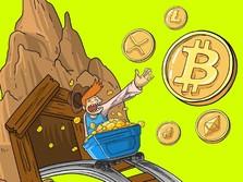 Apes! Pria Ini Buang Hdd Berisi Bitcoin Senilai Rp 3,9 T