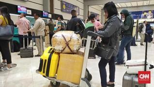 Masyarakat Kadung Pesimis Harga Tiket Pesawat Bakal Turun