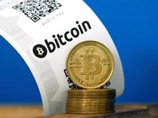 Ramai-ramai Investor Lirik Bitcoin, Cuannya Menggirukan?