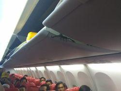 7 Hewan Berbahaya yang Muncul di Pesawat Selain Kalajengking Lion Air
