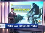 Tancap Gas Investasi Moge