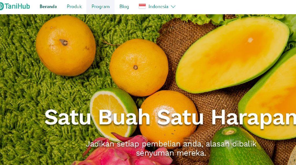 Mengenal TaniHub, Startup yang Disebut Jokowi di Debat Pilpres 2019