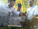Jejak Impor Air RI Tercatat BPS, Luhut: Nggak Ada!